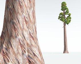 EVERYPlant Coastal Redwood Cartoon 09 --12 3D asset