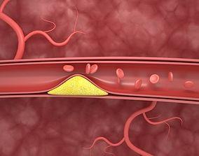 3D Blood Vessels Animation