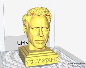 Tony Stark head sculpture - Robert 3D printable model 4