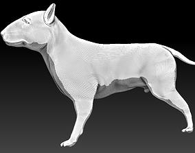 3D Bull terrier