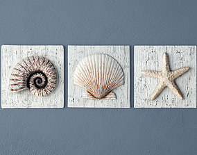 3D model Nautilus Seashell and Starfish Plaques
