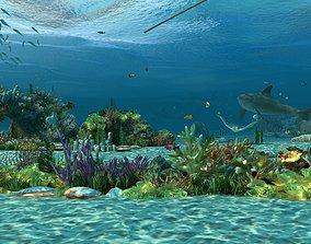 Ocean floor coral reefs Shoal of fish 3D