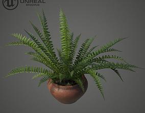 Home plant 3D model