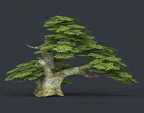 Low Poly Tree 18 3D model
