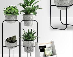 PLANTS 279 3D