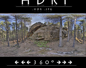 HDR FOREST ROCK 1 outdoors 3D