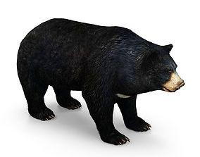 Bear low poly 3D model low-poly