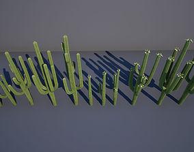 Saguaro cactus 3D asset