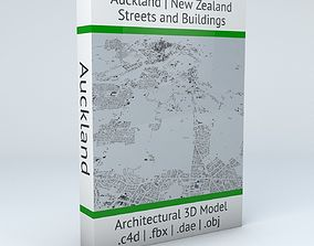 Auckland Streets and Buildings 3D model