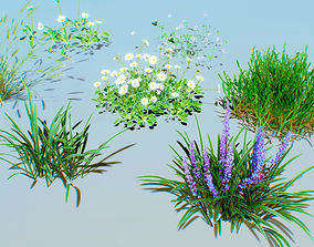 ground plants pack 01 3D