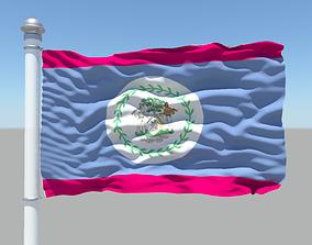 Belize Flag 3D