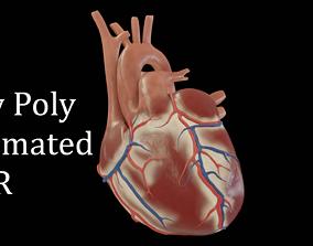 Human heart 3D asset animated