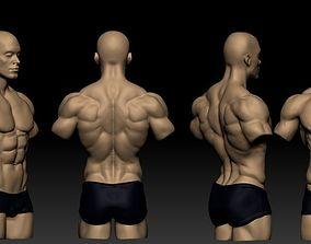 torso masculino 3D