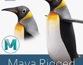 3D asset rigged Penguin