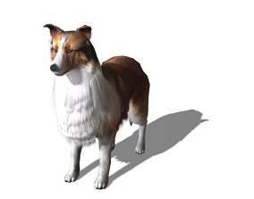 3D asset Magic dog