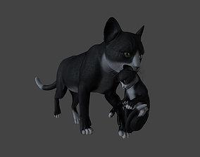 3D CATS-018 Cats