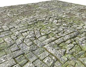 3D model Old Mossy Floor Seamless PBR