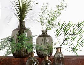 3D model Bouquet of Grass Herb Plant Glass Vases Set