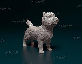 Cairn terrier 3D print model scotland