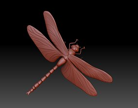 insect dragonfly 3D print model