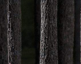 3D asset Tree bark