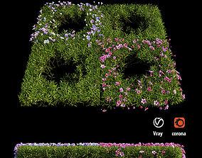 3D Plant Flower set 07