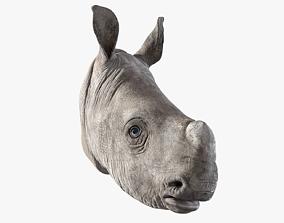 3D model Rhino Baby Head