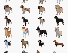 3D model Dogs Collection