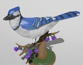 3D printable model raven Blue Jay