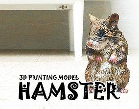 Hamster 3D Printing Model