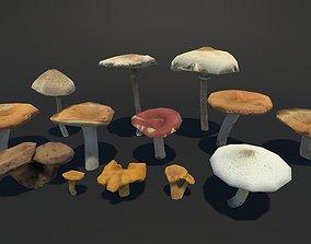 Forest Mushrooms Vol 2 3D model