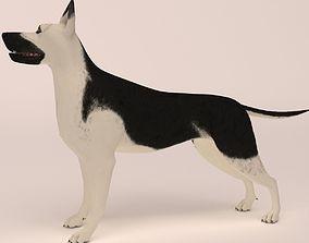 german East European Shepherd do not fur 3D
