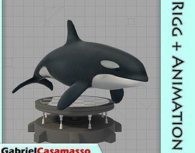 Killer Whale 3D asset animated