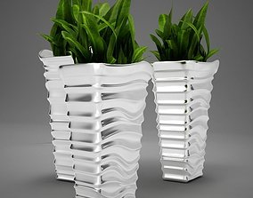 Plant living tall 3D model