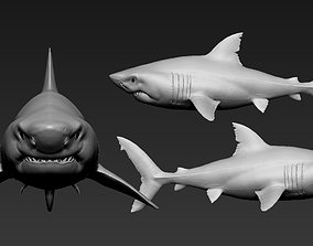 Great white shark 3D print model