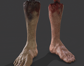 3D asset Severed Leg Fresh and Slightly Decomposed
