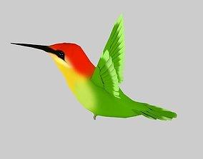 Humming bird-Rigged-Animated C4d 3D asset