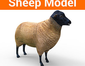 VR / AR ready 3D Sheep low poly Model