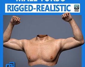 3D model Adult Male Torso Rigged