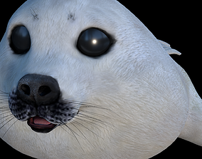 White seal cub 3D model VR / AR ready
