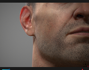 3D Poligone Facial Hair Tool for Substance Painter