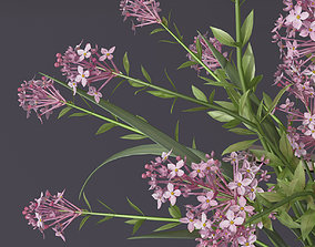 3D model Realistic 4 colors lilac lily lavender Flower 2