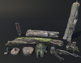 Stumps and Trunks Vol 1 3D asset