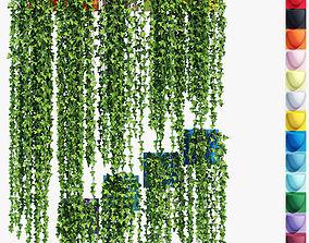 Plants two 3D model