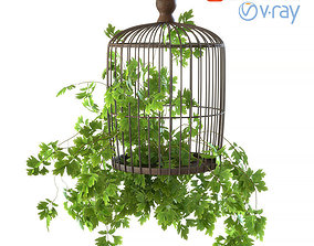 3D model Plant cell