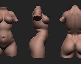 Plus Size Female Torso 3D asset VR / AR ready