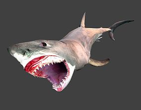 Great white shark 3D asset animated game-ready