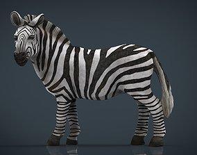 african ZEBRA 3D model