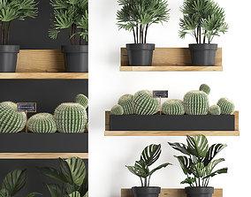 Plant set wall decor vertical garden 51 3D model