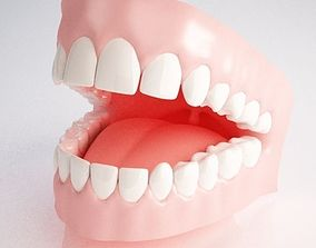 3D model Gums and Teeth